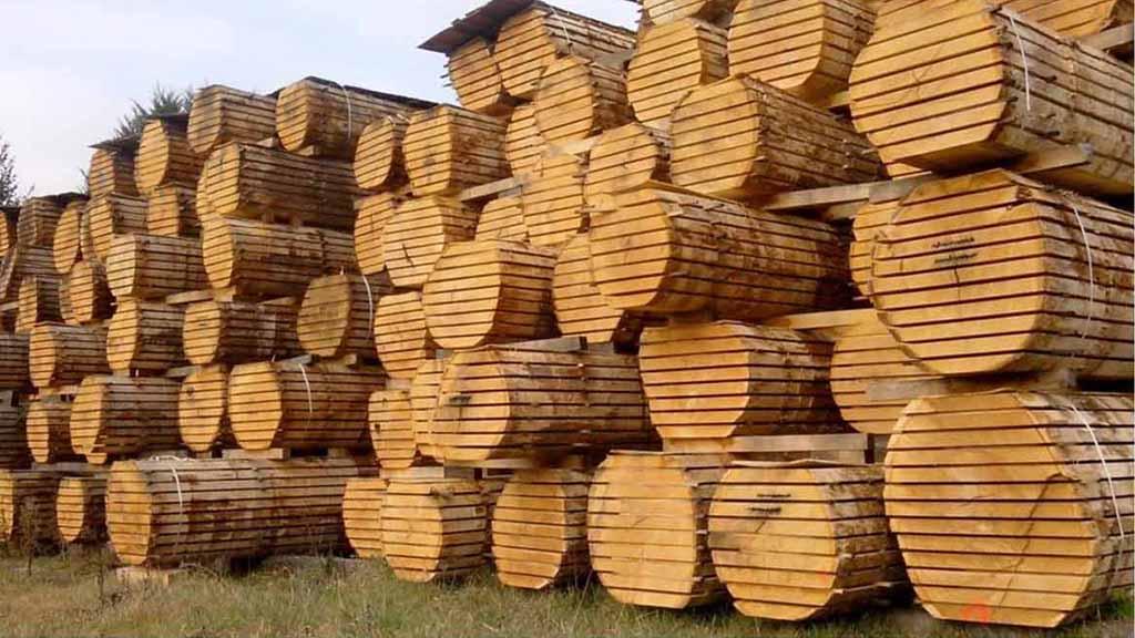 Como-secar-madera-tronco-aire